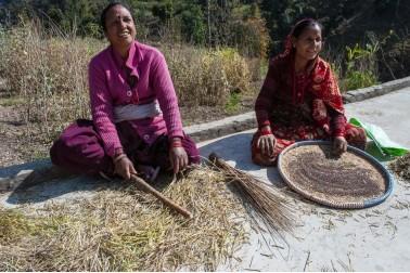 Deux femmes en habit traditionnel en train de trier des épices