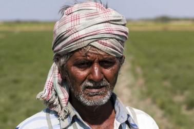 Portrait du producteur d'épices bio dans le Gujarat, en Inde avec qui Epices Shira collabore