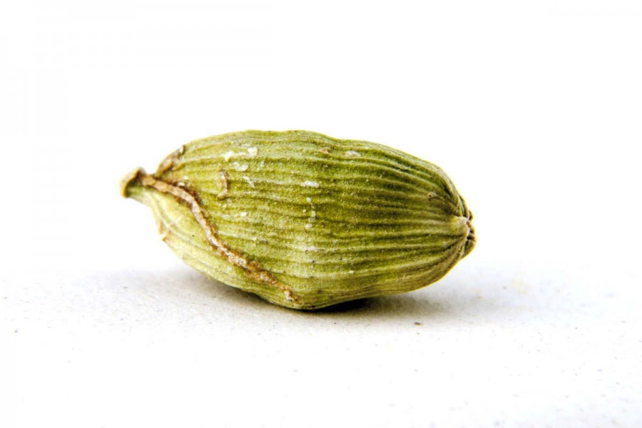 Cardamome verte bio et sauvage (elettaria cardamomum) sélectionnée par Epices Shira