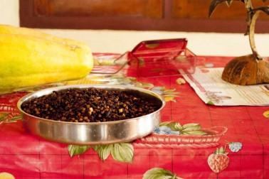 Plateau posé sur la table à manger des producteurs avec qui nous travaillons. Dedans, des clous de girofle