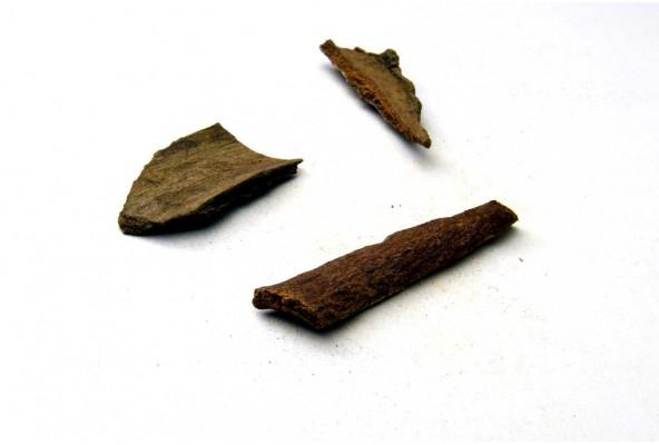 Cannelle cassia de Sulawesi (cinnamomum cassia, cinnamon) sélectionnée par Epices Shira
