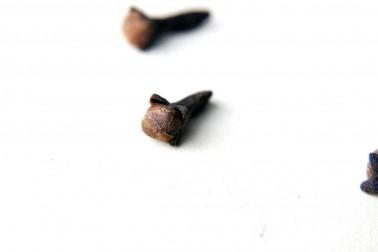 Clous de girofle sauvage (syzygium aromaticum, clove) sélectionnés par Epices Shira
