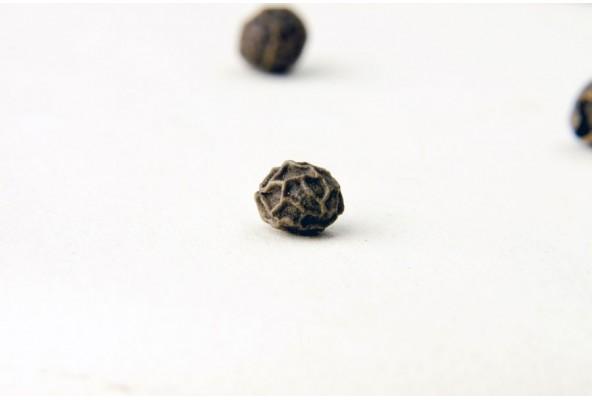 Poivre noir sauvage du Sri Lanka (piper nigrum, wild black pepper) sélectionné par Epices Shira