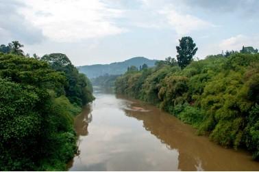 Paysage du Sri Lanka où poussent les poivriers sauvages