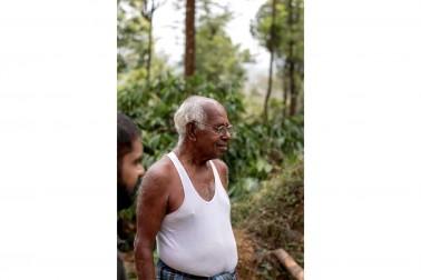 Portrait du producteur d'épices bio dans le Karnataka, en Inde avec qui Epices Shira collabore