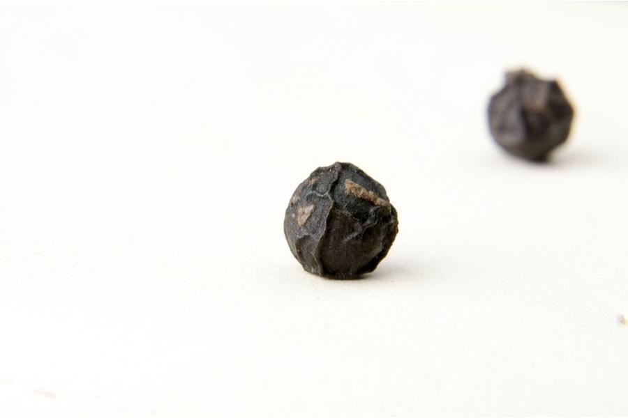 Poivre noir bio de Tellicherry (piper nigrum, Tellicherry black pepper) sélectionné par Epices Shira