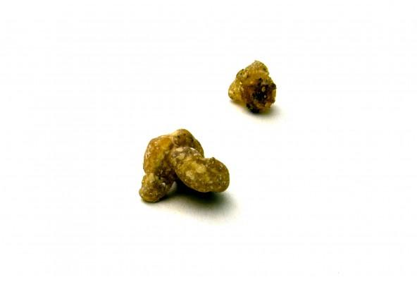 Ase fétide bio d'Iran (ferula assa-foetida, asefétide, asafoetida) sélectionnée par Epices Shira