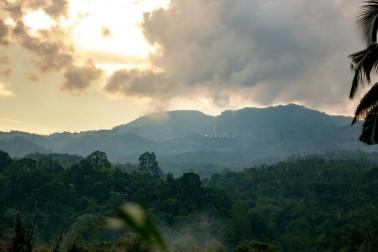 Paysage de l'île de Sulawesi (les Célèbes)