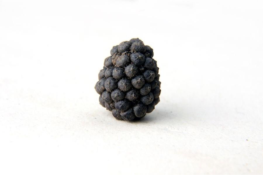 Poivre long boule sauvage (piper longum) d'Assam, en Inde sélectionné par Epices Shira