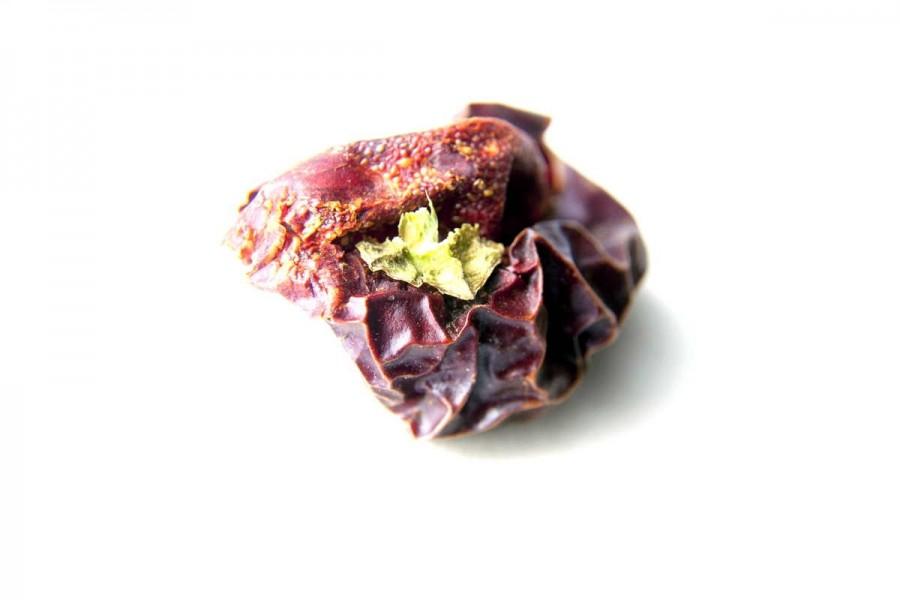 Piment ñora bio (capsicum annuum) de Murcia, en Espagne sélectionné par Epices Shira