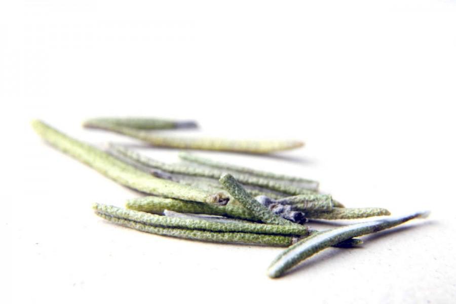 Romarin bio et sauvage (rosmarinus officinalis) du Languedoc, en France, sélectionné par Epices Shira