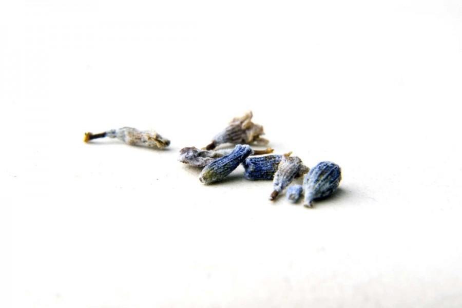 Lavande fine bio et sauvage (lavandula angustifolia) du Languedoc, sélectionnée par Epices Shira