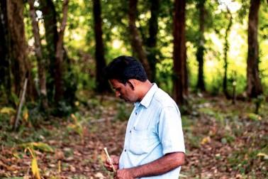 Portrait du producteur d'épices bio dans le Kerala, en Inde avec qui Epices Shira collabore