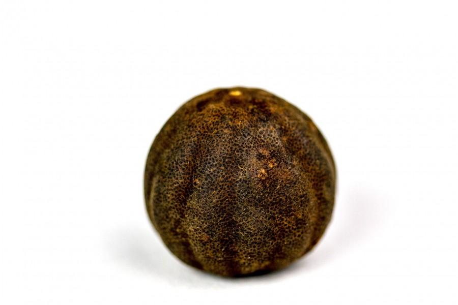 Citron noir d'Iran