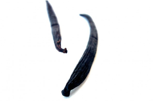 Vanille de Sulawesi