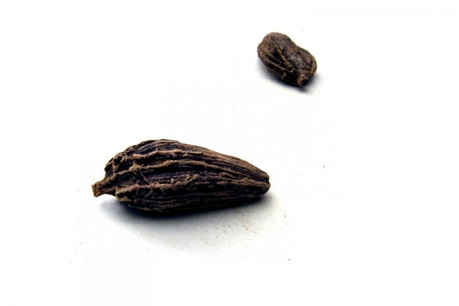 Cardamome noire fumée du Bhoutan
