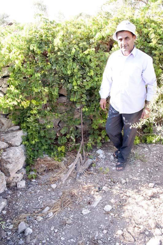 Producteur d'épices à Jénine, en Palestine
