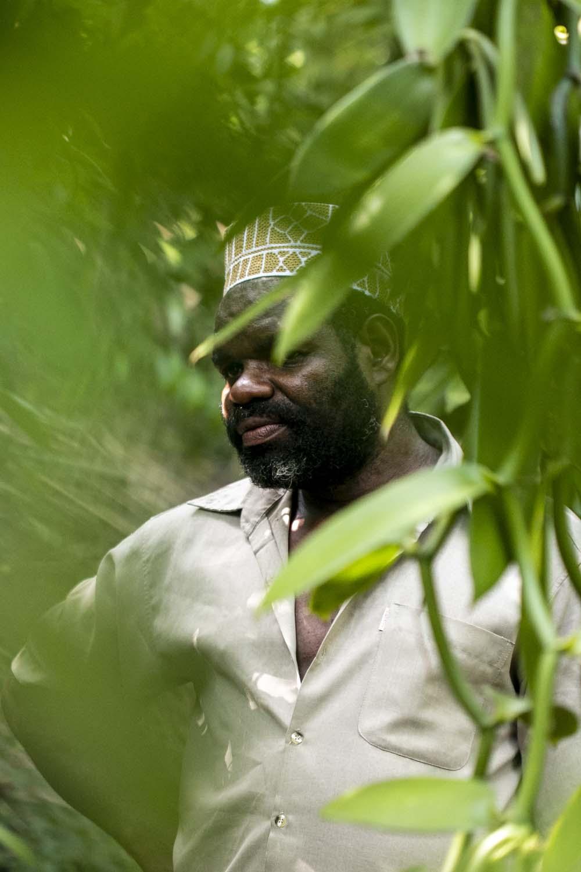Nature verdoyante autour de la ferme des producteurs d'épices avec qui nous collaborons sur l'île de Pemba, Tanzanie