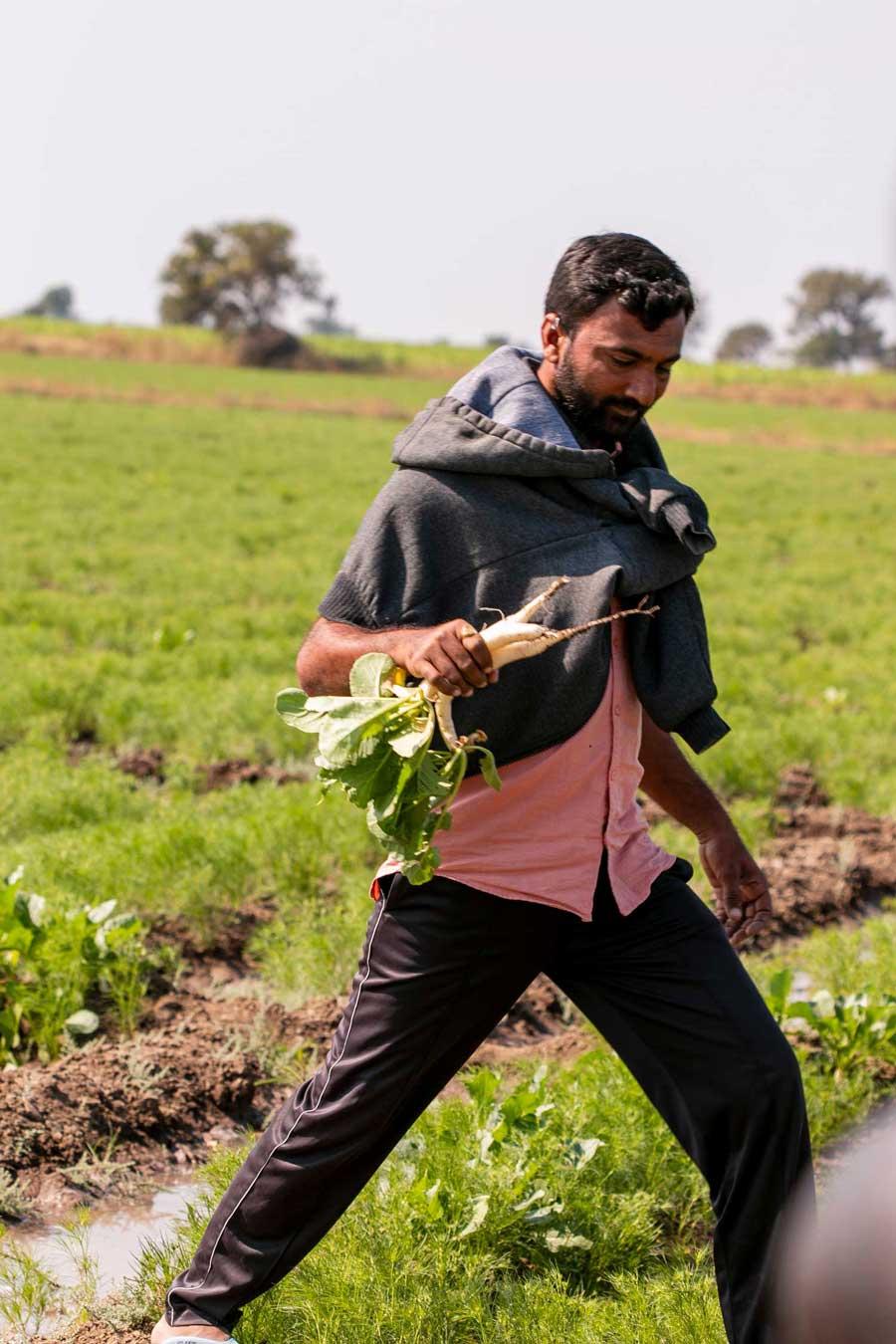 Producteur du Gujarat, en Inde, avec qui nous collaborons