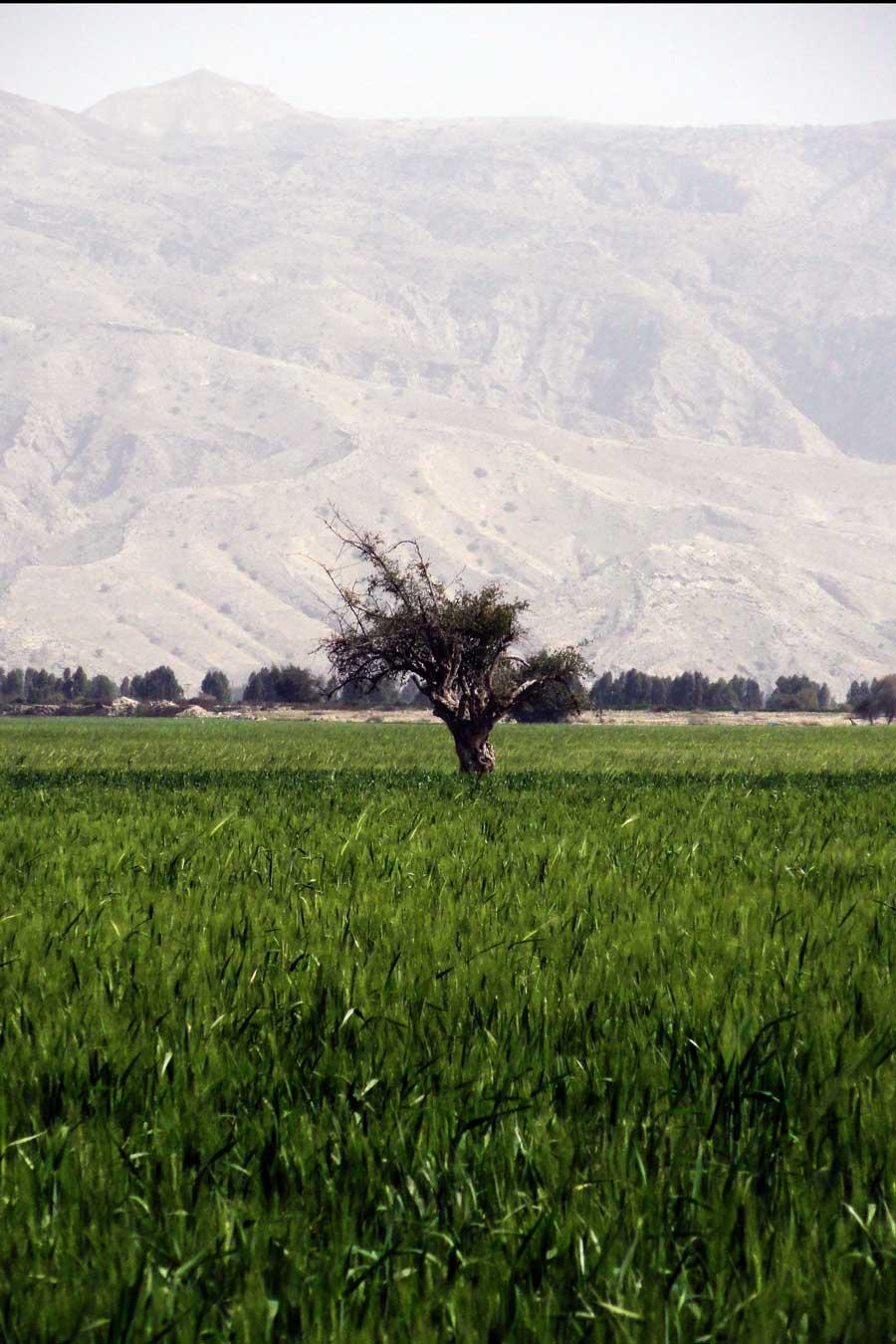 Paysage de la région Fars, Iran