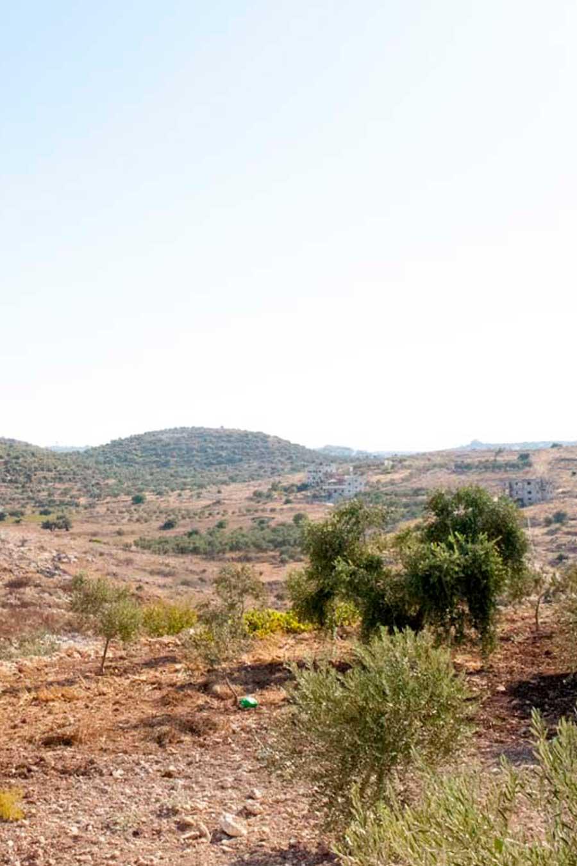 Paysage pris à Jénine, en Palestine
