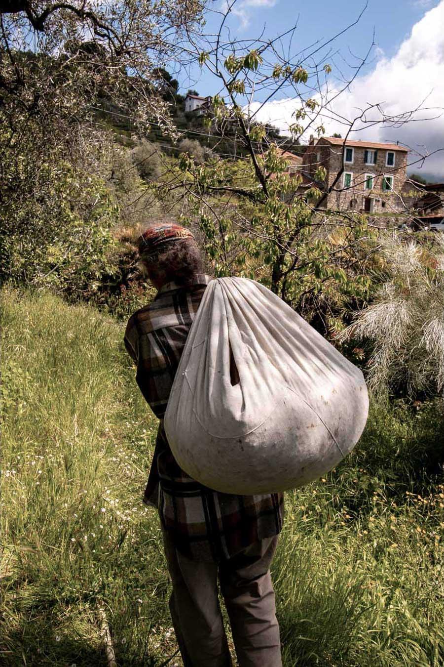 Producteur d'eau de fleur d'oranger, portant un sac rempli de fleurs