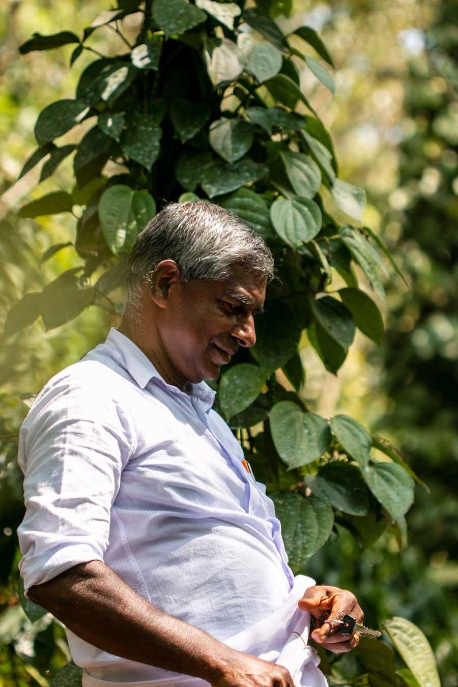 Producteur d'épices du Kerala, en Inde, avec qui nous collaborons