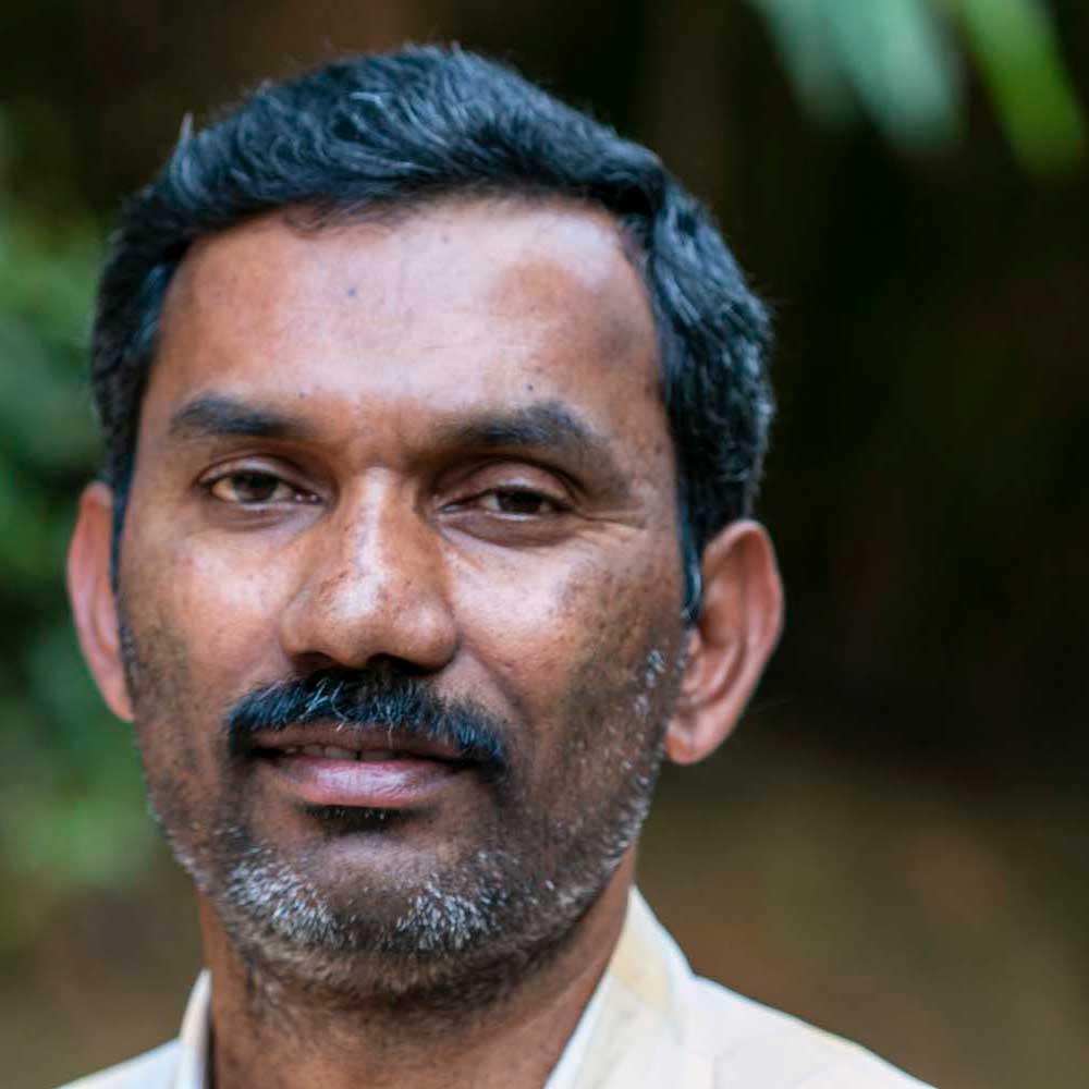 Producteur de poivre vert dans le Kerala, en Inde, avec qui nous collaborons