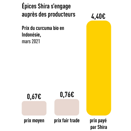 Prix curcuma Shira
