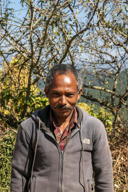 Cueilleur de sil timur sauvage au Népal, avec qui nous collaborons