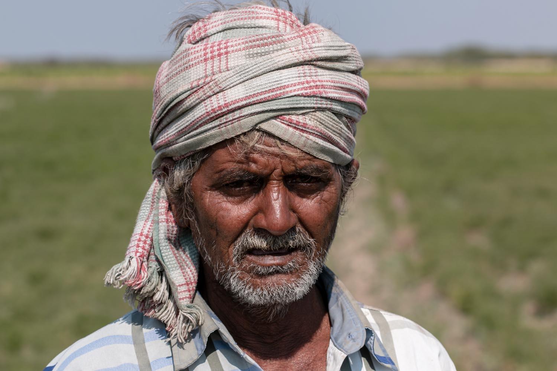 Inde, Gujarat, Wayanad, démarche éthique et responsable, épices de terroir, single origin spices, méthode artisanale, développement durable, cumin biologique, épices paris, épices en vrac, épices sourcées en direct des petits producteurs, épices biologiques, épices bio